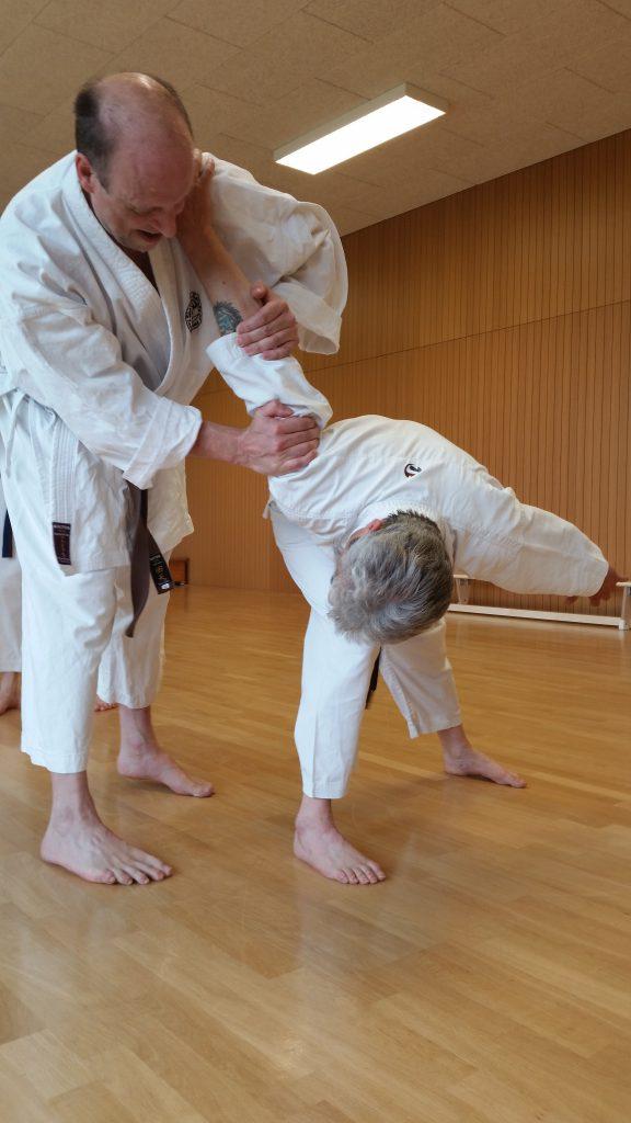 karateinfo